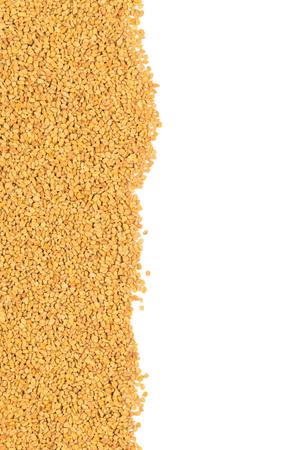 unprocessed: Whole, unprocessed fenugreek (Trigonella foenum-graecumcumin) seeds border on white background