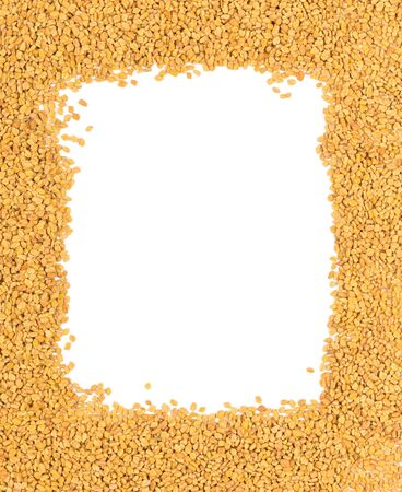 unprocessed: Whole, unprocessed fenugreek (Trigonella foenum-graecumcumin) seeds border on white background