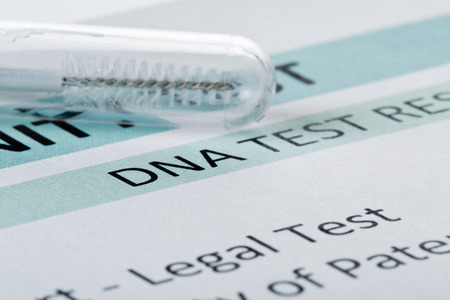 alleged: Buccal swab in test tube on paternity DNA test result chart form