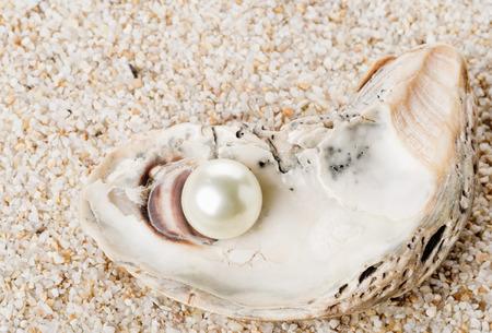 Einzelne Perle in der Austernmeermuschel über Sandhintergrund