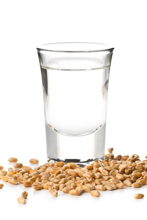 German hard liquor Korn Schnapps in shot glass with wheat grains over white background Stock Photo