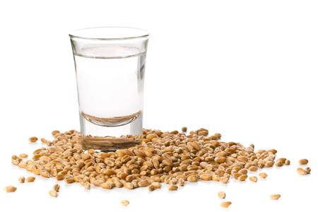 German hard liquor Korn Schnapps in shot glass with wheat grains over white background Standard-Bild