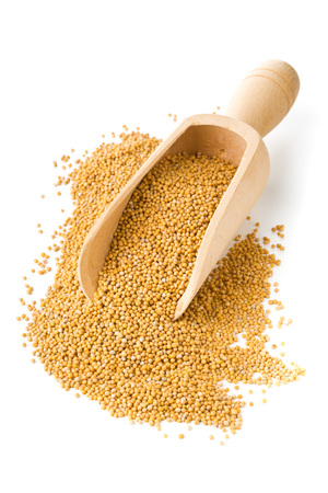 Heap of raw, unprocessed mustard seed kernels in wooden scoop on white background Stockfoto