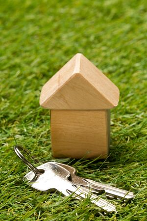 Little wooden miniature house model on green grass background with house keys - ecological living or house building concept, selective focus Stockfoto