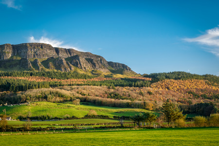 This is a picture of Binevenagh mountain near Limavady in Northern Ireland.  The pine trees seem to grow in layers up the side of the hill