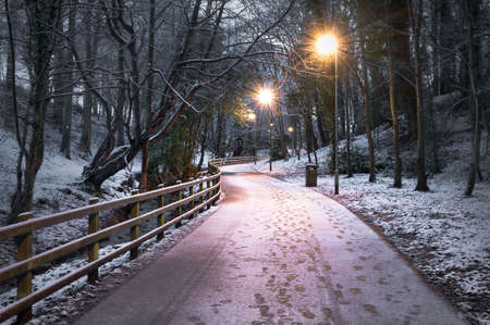 Winter footpath in St Columb's Park in Derry covered in a light dust of snow. Stock fotó