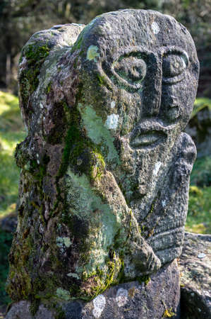 This is a bronze age stone carviing of a man on one side and a female on the other. They are located In Caldragh Cemetery on Boa Island, Lower Lough Erne. Northern Ireland Stock fotó