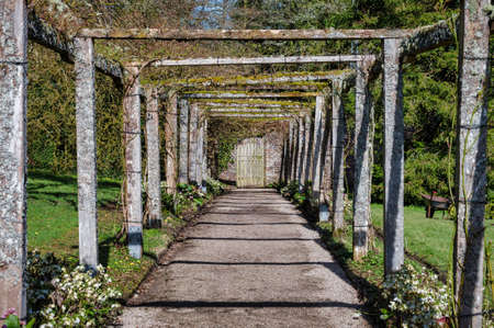 Covered Trellis in an Irish walled garden