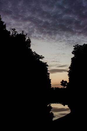 Silhouette of a forest with a lonely tree and a reflection in the river below, with dark clouds in dusk