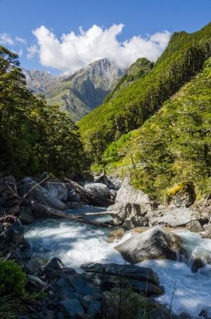 River flows through green valley