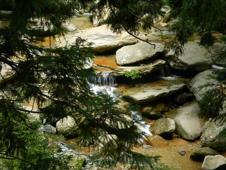 pine creek: Stream in mountains