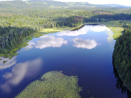 Lake reflections Imagens