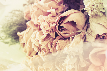 bouquet of dried rose, vintage backgorund Stock Photo
