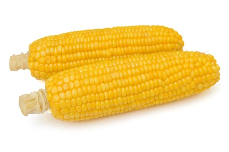 Two corn cobs isolated on the white  photo