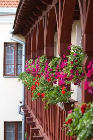 Wrought wooden balcony full of flowers photo