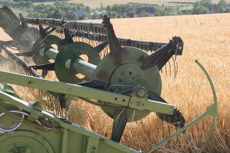 Machine harvesting the corn field Stock Photo - 2775992