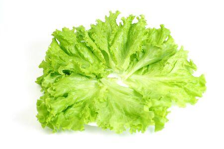 lactuca sativa: Green leaves lettuce (Lactuca sativa L.) on a plate