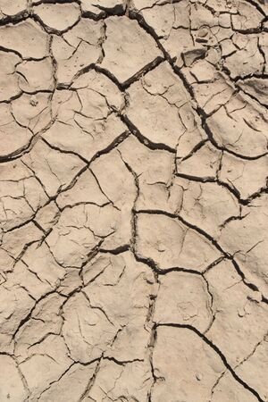 Background of a dry Dirt without a grass without water Stock Photo - 3160968