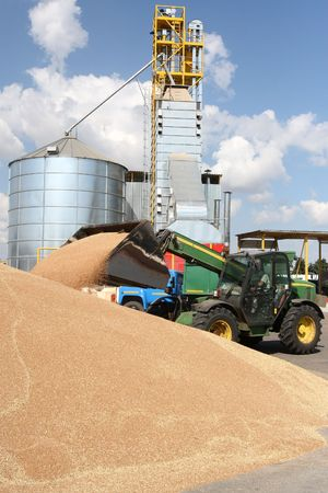 food distribution: Grain loading on a farm a tractor warehouse Stock Photo