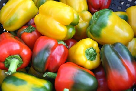 Fresh green, red and yellow peppers photo