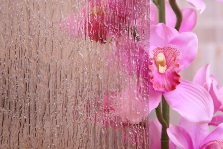 Beautiful pink orchid behind the stained glass