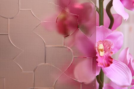 Beautiful pink orchid behind the stained glass photo