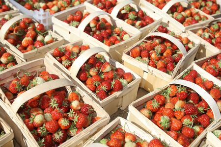 ripe strawberries with leaves in baskets photo