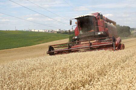 Summer landscape - combine working on a wheat field Stock Photo - 7420646