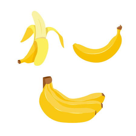 vectro: Hand drawn banana. Vector decorative element. Cartoon style.