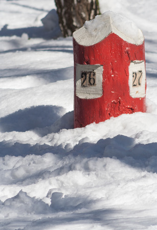 quarterly: Russia forest quarterly red column in snow, winter  Stock Photo