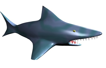 Isolated angry shark 3d