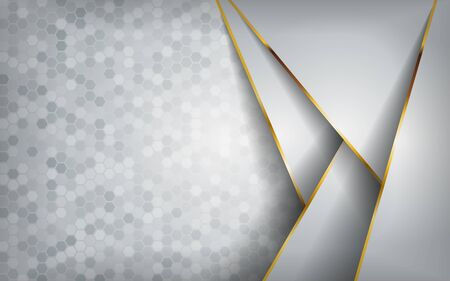 luxurious modern abstract white with golden lines background. vector