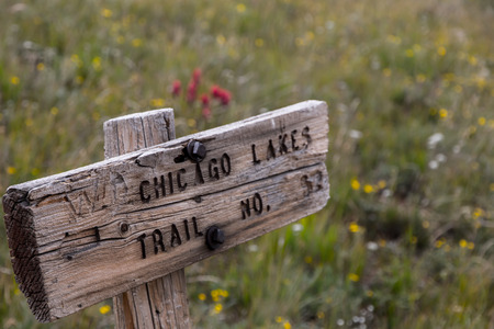 mount evans: One of the old signs for the trail that leads to Chicago Lakes in the Mount Evans Wilderness, surrounded by wildflowers