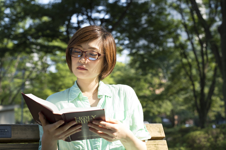 autodidact: Girl reading a book in park, woman, green Stock Photo