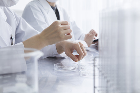 Female researcher are the development of new products in the laboratory