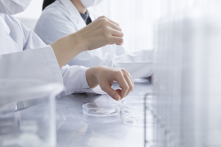 new products: Female researcher are the development of new products in the laboratory