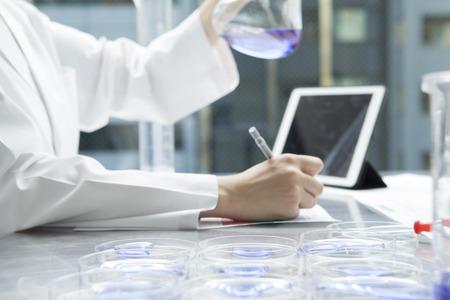 女性研究者は三角フラスコの液体を研究しています。