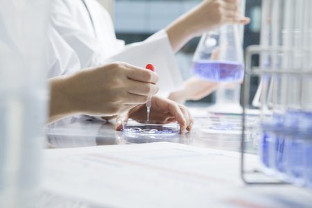 researchers: Women researchers have repeated experiments in the laboratory