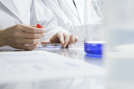 Women researchers have repeated experiments in the laboratory