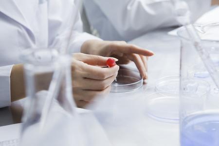 Les femmes chercheurs ont mené des expériences en utilisant une boîte de Pétri