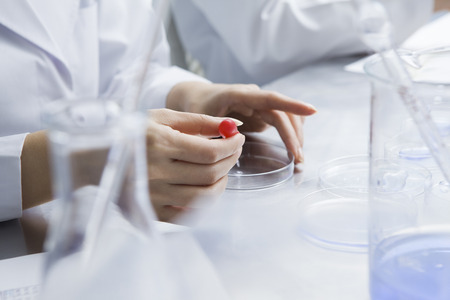 Women researchers have conducted experiments using a petri dish