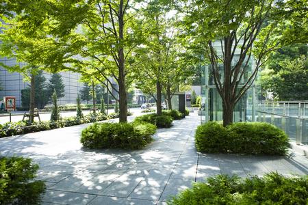都市緑化計画 写真素材