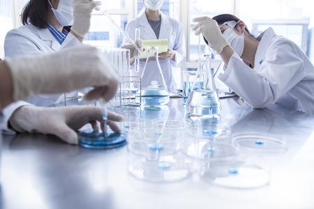 bata blanca: Estudiantes de la ciencia que trabajan con productos químicos en el laboratorio de la universidad. Foto de archivo