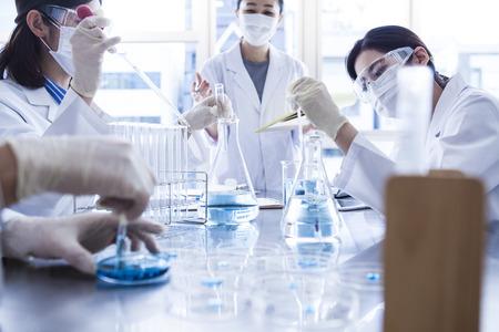 Wetenschapper met petrischaal in het laboratorium.