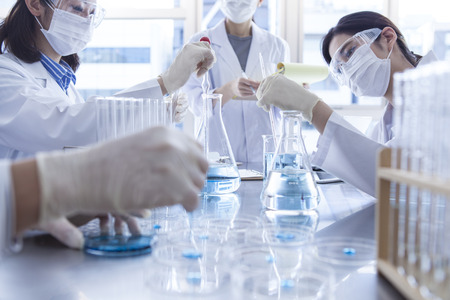 Scientist in laboratory examining liquid in Erlenmeyer flask. Banque d'images
