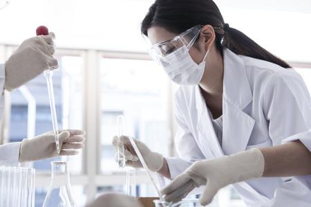 experimento: Los estudiantes universitarios que hace el experimento. Foto de archivo