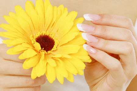 A female hand touching a flower Stock Photo