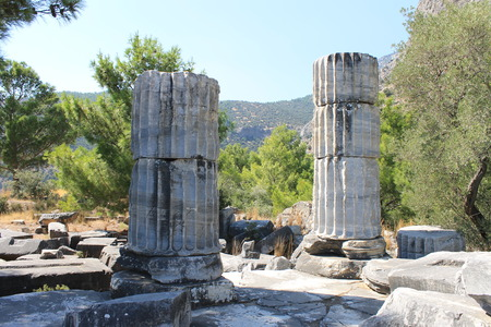 athena: The ruins of the Temple of Athena in the ancient city of Priene in Turkey