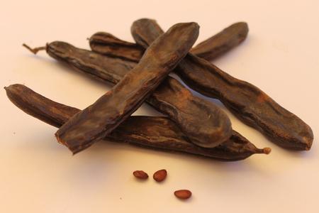 carob: Ceratophyllum Carob pods dry fruits with seeds Stock Photo