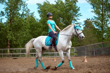 gelding: Girl rider trains the white horse in the riding course in summer day